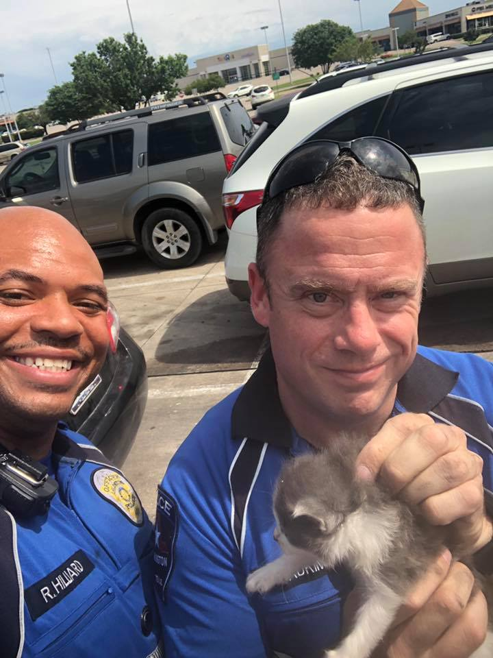 happy police to rescue a kitten